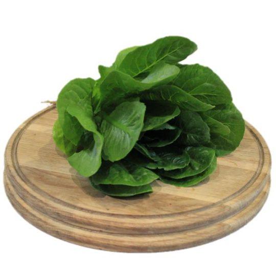 Салат ромєн зелений Гоголів
